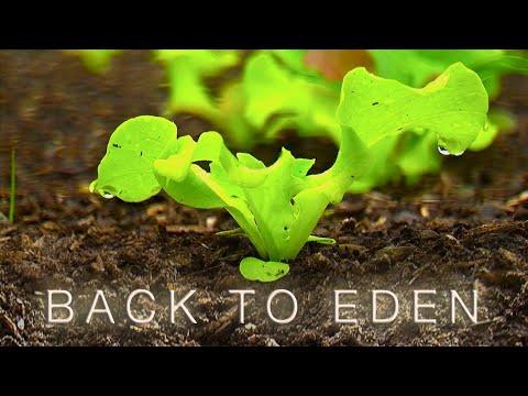Back To Eden Gardening Documentary Film - How to Grow a Vegetable Garden