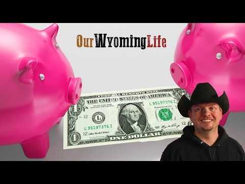 The Cost of Raising Pigs
