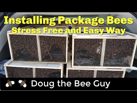 Installing Package Bees the Easy and Stress Free Way