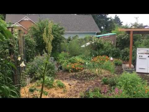 Holistic garden design: Integrate, don't segregate.