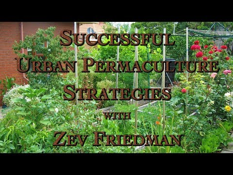 Successful Urban Permaculture Strategies with Zev Friedman