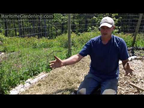Permaculture Principle #1: Observe and Interact