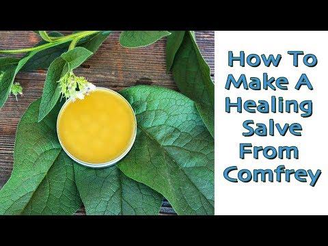 How To Make An Herbal Salve - Comfrey. (Uses For Healing Salves)