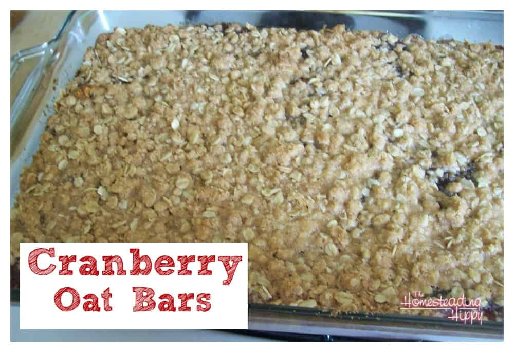 cranberry oat bars~The Homesteading Hippy