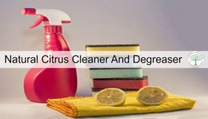 citrus cleaner post