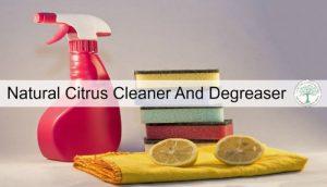 citrus cleaner post