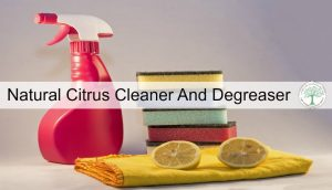 Natural Citrus Cleaner and Degreaser