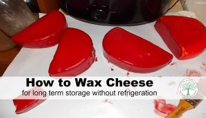 Learn how to wax cheese for long term storage without needing a fridge! Easy to do waxing with step by step instructions!
