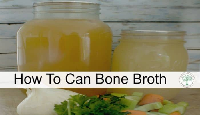 can bone broth post