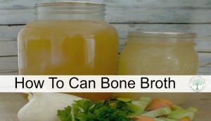Have lots of nutritious bone broth on hand at all times by canning it for later! The Homesteading Hippy