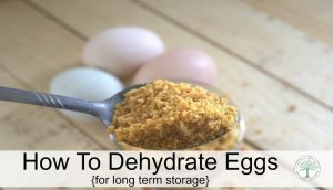 Powdered Eggs-Dehydrate Eggs for Longer Storage