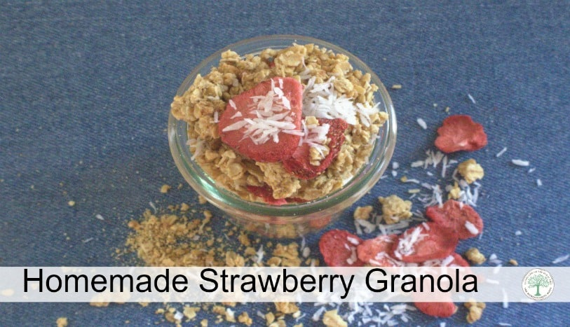 For breakfast, think outside the box with this easy to make homemade strawberry granola recipe!~The Homesteading Hippy