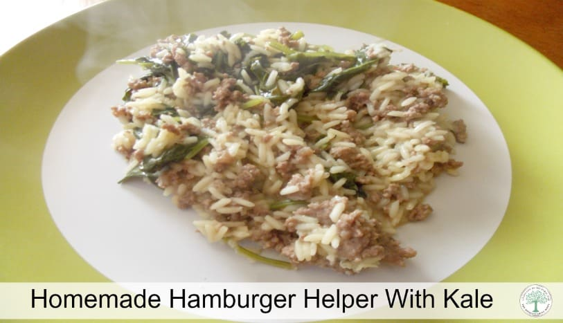 You can easily have a delicious, nutritious meal faster than the time it takes you to open a box with homemade hamburger helper! TheHomesteadingHippy