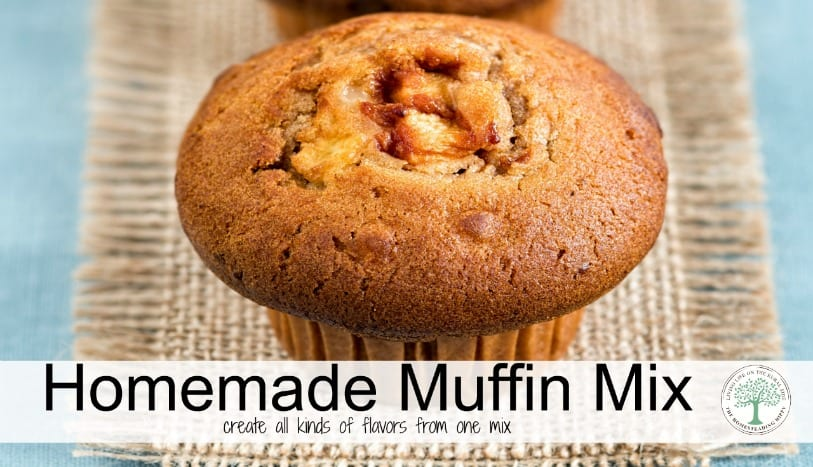 There's nothing more homey than a fresh baked muffin. Try this premade mix and create all different flavor combinations! The Homesteading Hippy
