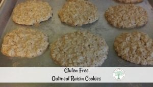Soft and chewy oatmeal raisin cookies that are gluten free? Sign me up! Get the recipe here! The Homesteading HIppy