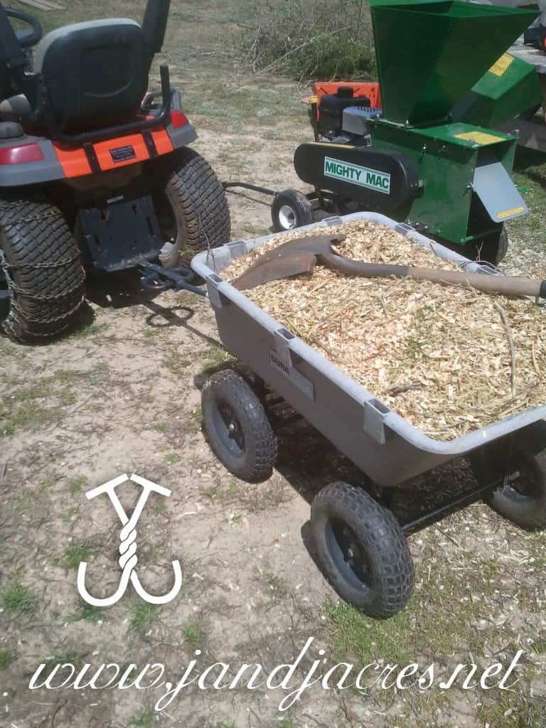 Mulching to Save Water and Money