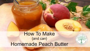 Peach Butter To Make And Can At Home