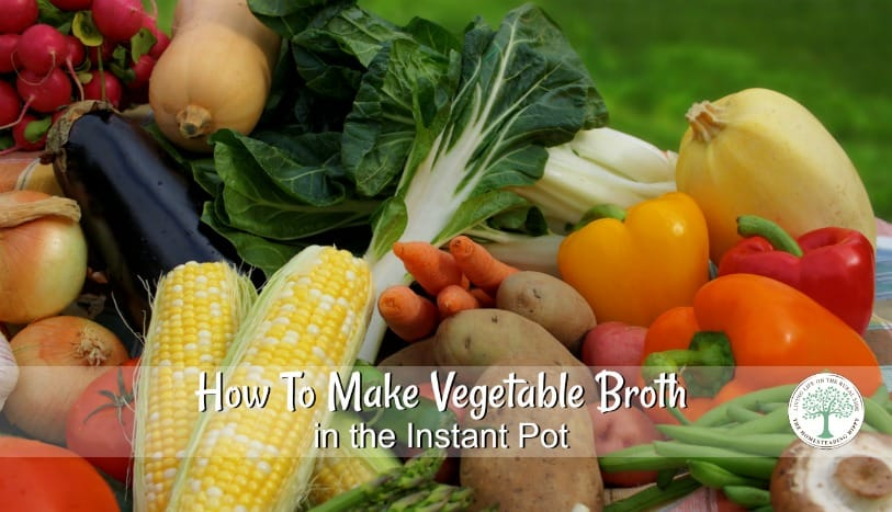 Need gut healing broth, but you are a vegan or vegetarian? Try this delicious vegetable broth you can make in 2 hours in your Instant Pot! The Homesteading Hippy