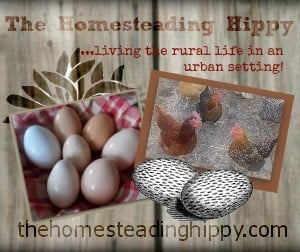 thehomesteadinghippy.com