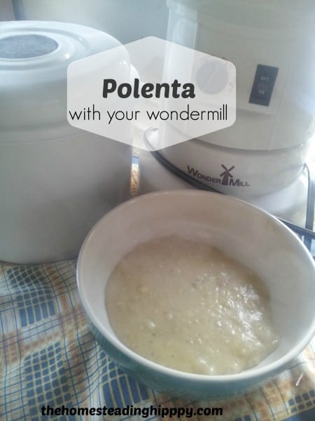 Polenta with the Wondermill