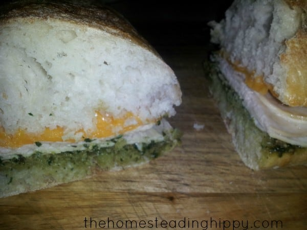 Recipes Made with Applegate {review}