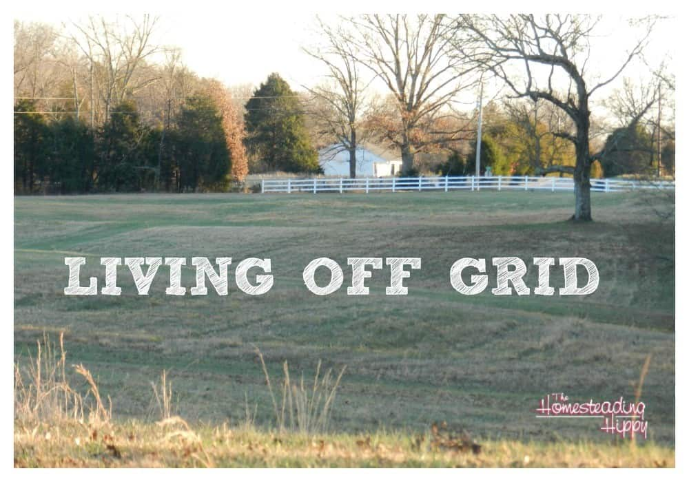 Living Off Grid-How To Get Started On Your Own Path