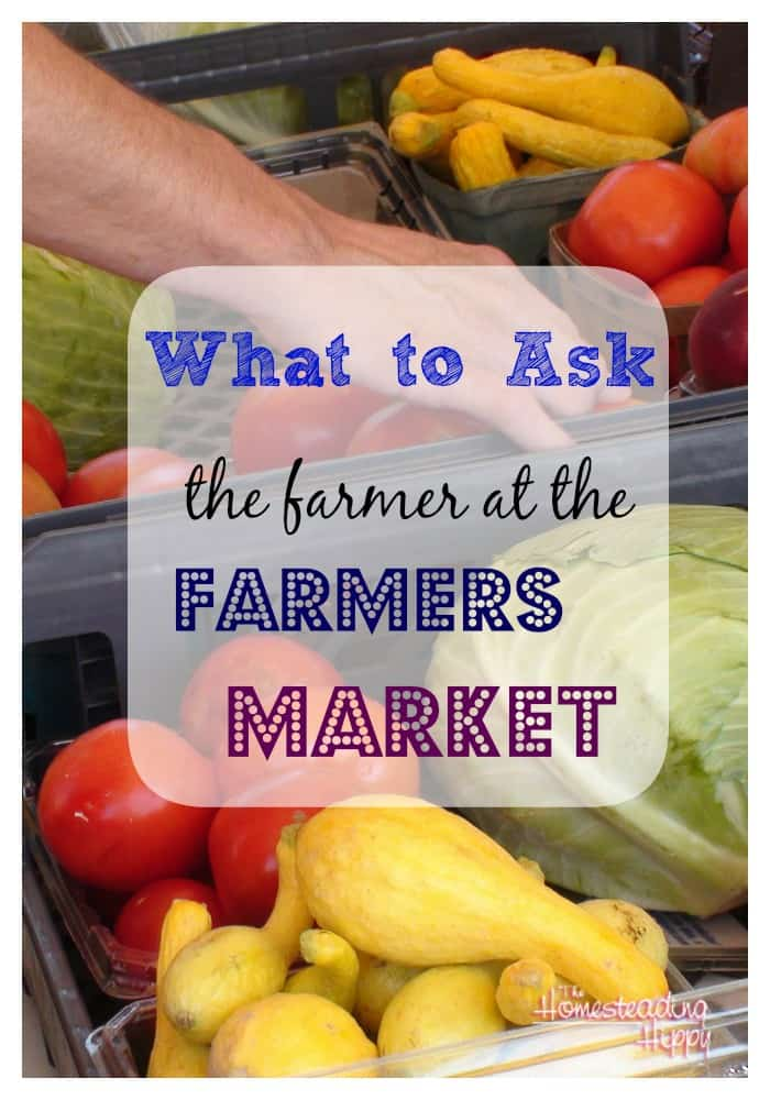 what to ask at the farmers market