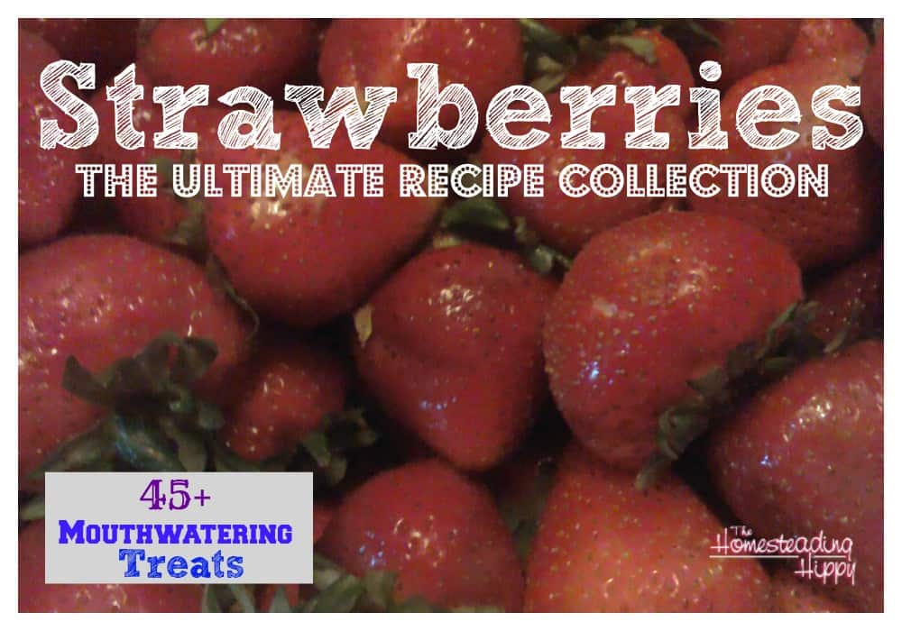 The-ultimate-strawberry-recipe-collection~The HomesteadingHippy