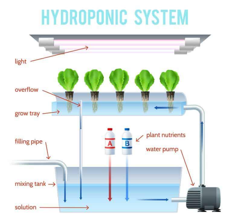 hydroponic system diagram