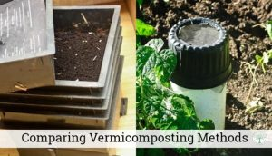 vermicomposting methods post