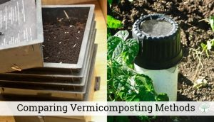Comparing Vermicomposting Methods – An Overview