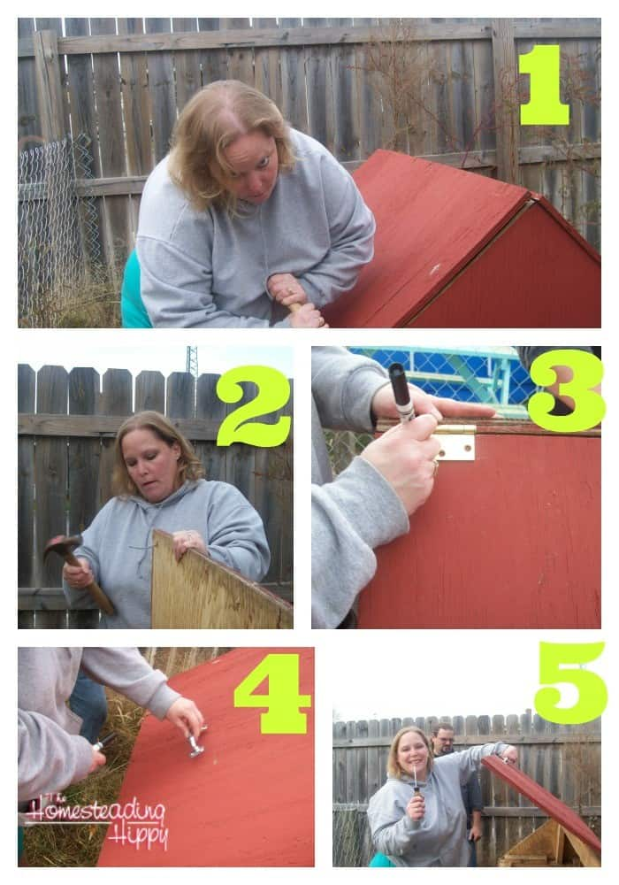 Upcycle an old dog house into a great little coop for your flock! Here's how! The Homesteading Hippy
