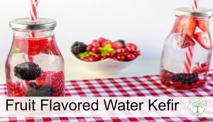 How To Make Water Kefir {with fruit flavoring}