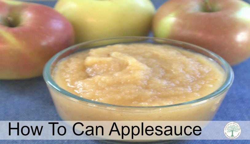 Learning how to can applesauce is a great way to get started in home canning. It's quick, easy and oh so yummy! ~The Homsteading Hippy