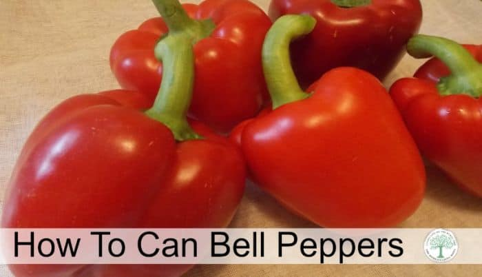 can peppers post