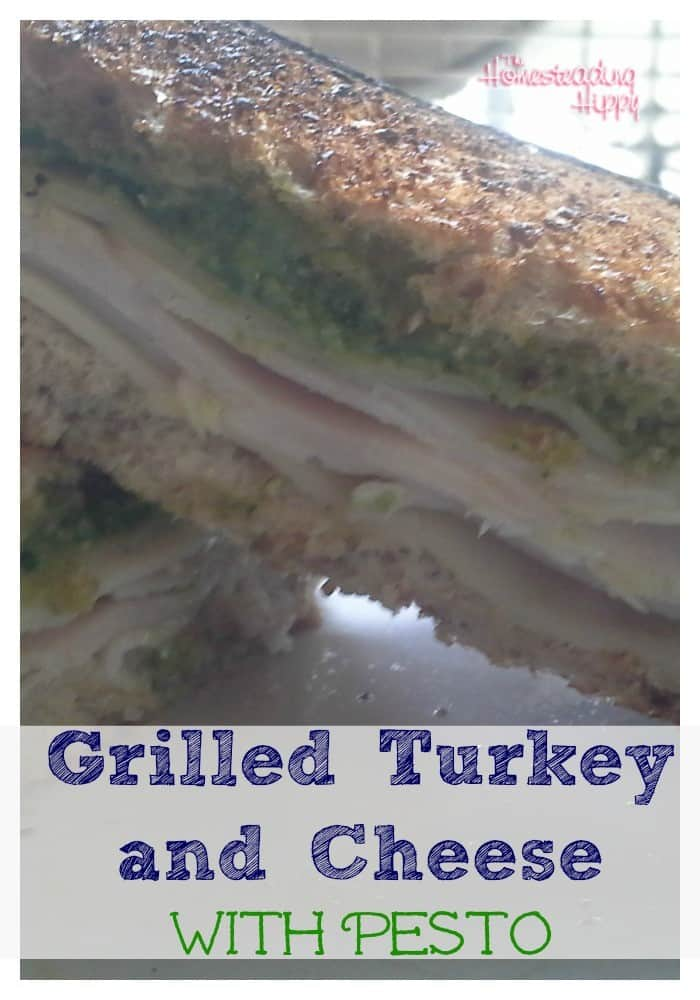 grilled turkey and cheese with pesto~The Homesteading Hippy