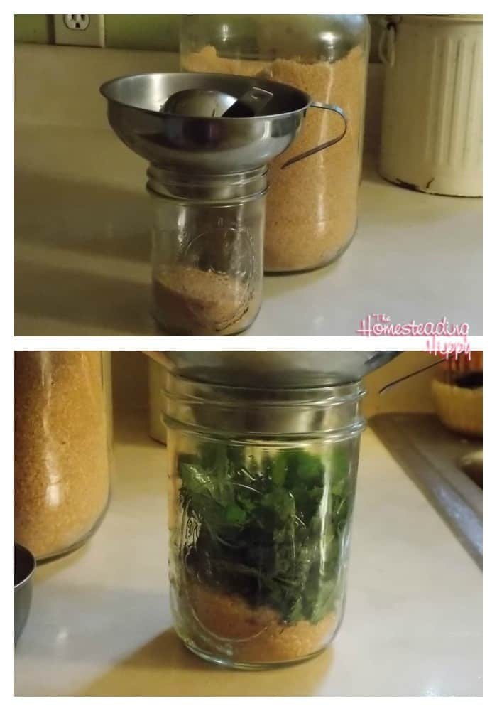 Got mint?  make mint infused sugar for delicious baking or to use in meat rubs and marinades~The Homesteading Hippy