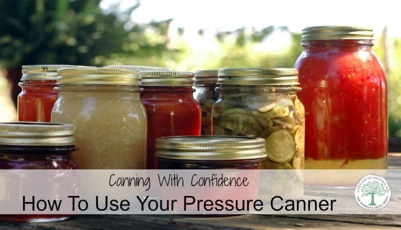Simple tips to help you learn to use your pressure canner and can with confidence! The Homesteading Hippy