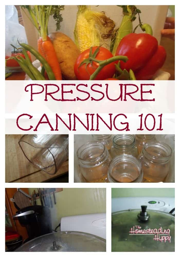 Simple tips to help you learn to use your pressure canner and can with confidence. Learning how to preserve your garden bounty by pressure canning isn't hard at all. | The Homesteading Hippy