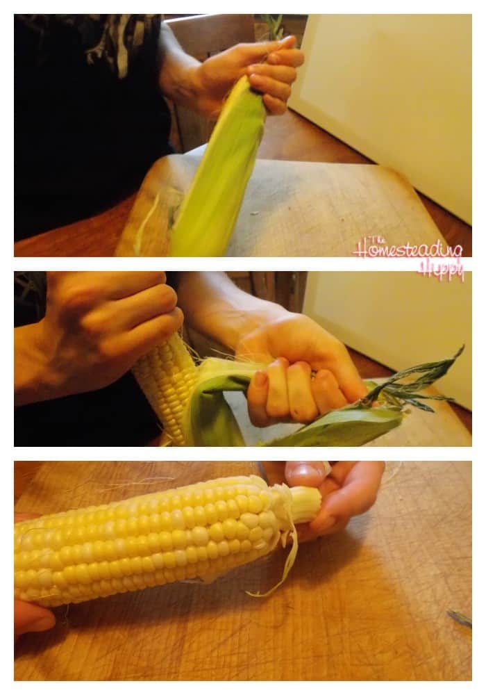 shucking corn for preserving the harvest-canning corn~The Homesteading Hippy