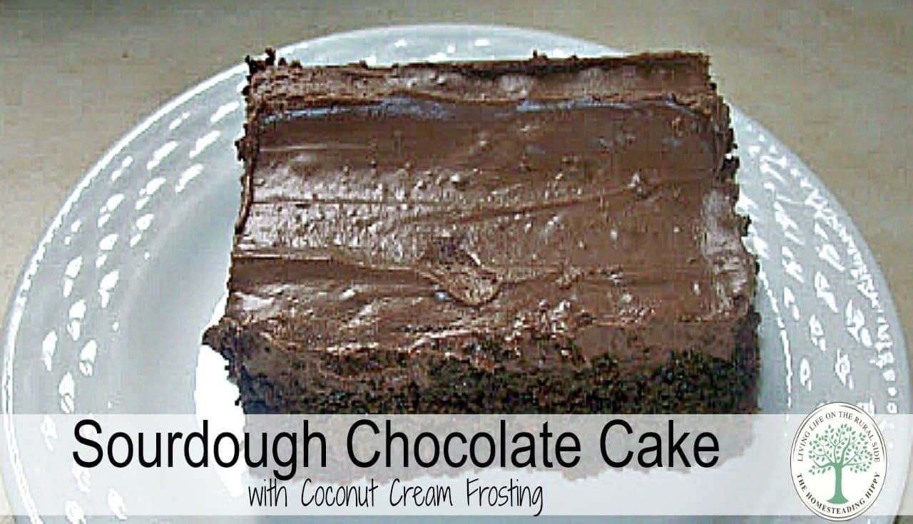 Sourdough Chocolate Cake With Cream Cheese Frosting