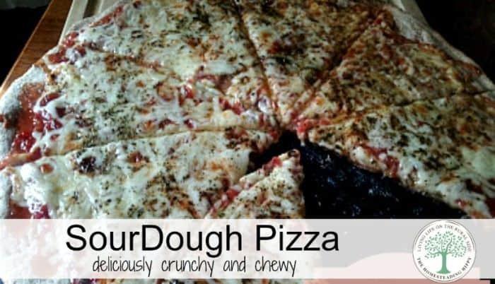 sourdough pizza post