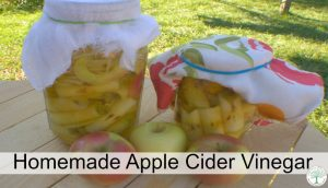 Make Your Own Apple Cider Vinegar