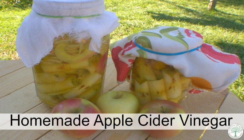 Apple Cider Vinegar has wonderful health benefits, as well as many beauty uses. Learn to make your own easily~The Homesteading Hippy