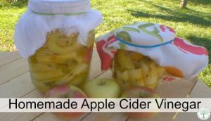 apple cider vinegar post