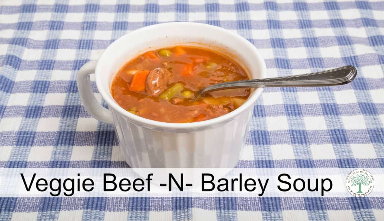 Warm up inside when it's cold outside with this veggie beef -n- barley soup! The Homesteading Hippy