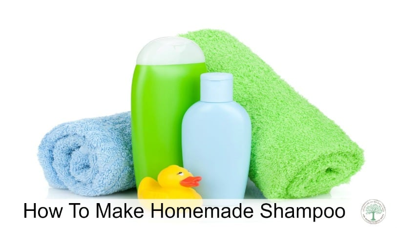 Skip the chemicals and trash while saving money! Make your own shampoo! The Homesteading HIppy