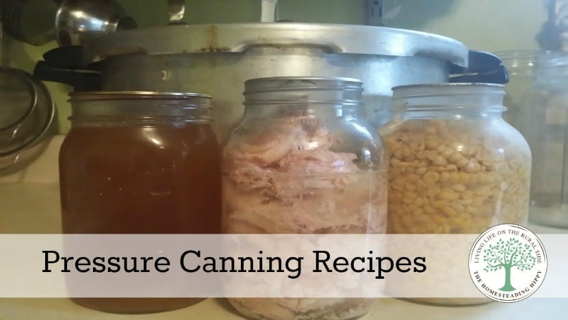 Get to know your pressure canner with these easy to use recipes that are perfect for everyone, beginner to expert! The Homesteading Hippy #canning #homesteadhippy