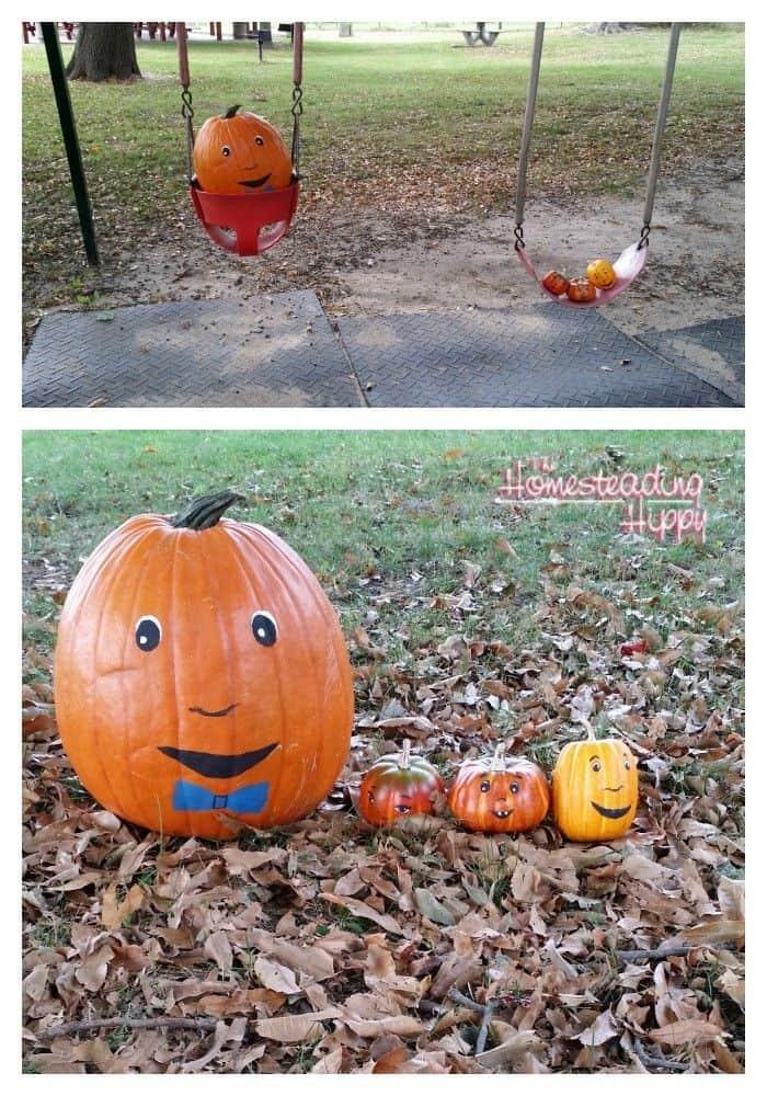 pumpkins outside