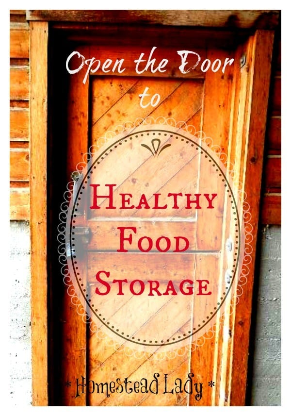 Healthy-Food-Storage-l-Its-not-as-hard-as-you-might-think-l-Homestead-Lady